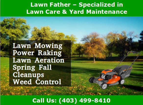 These Are The Most Important Lawn Care Services Which You Must