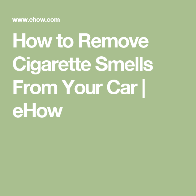 How To Remove Mold From A Car S Interior Mold Remover