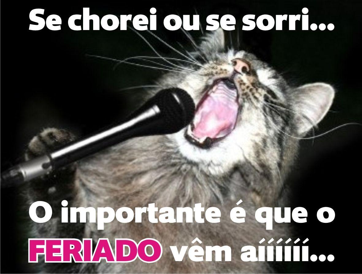 Bom Dia Engracado: Singing Cat Classic Round Sticker