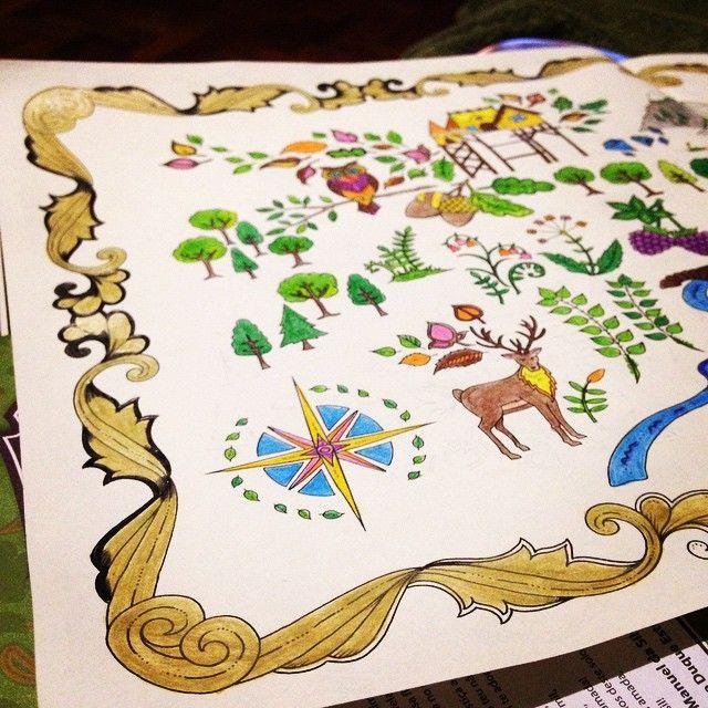 Floresta Encantada Mapa Tesouro Johanna Basford