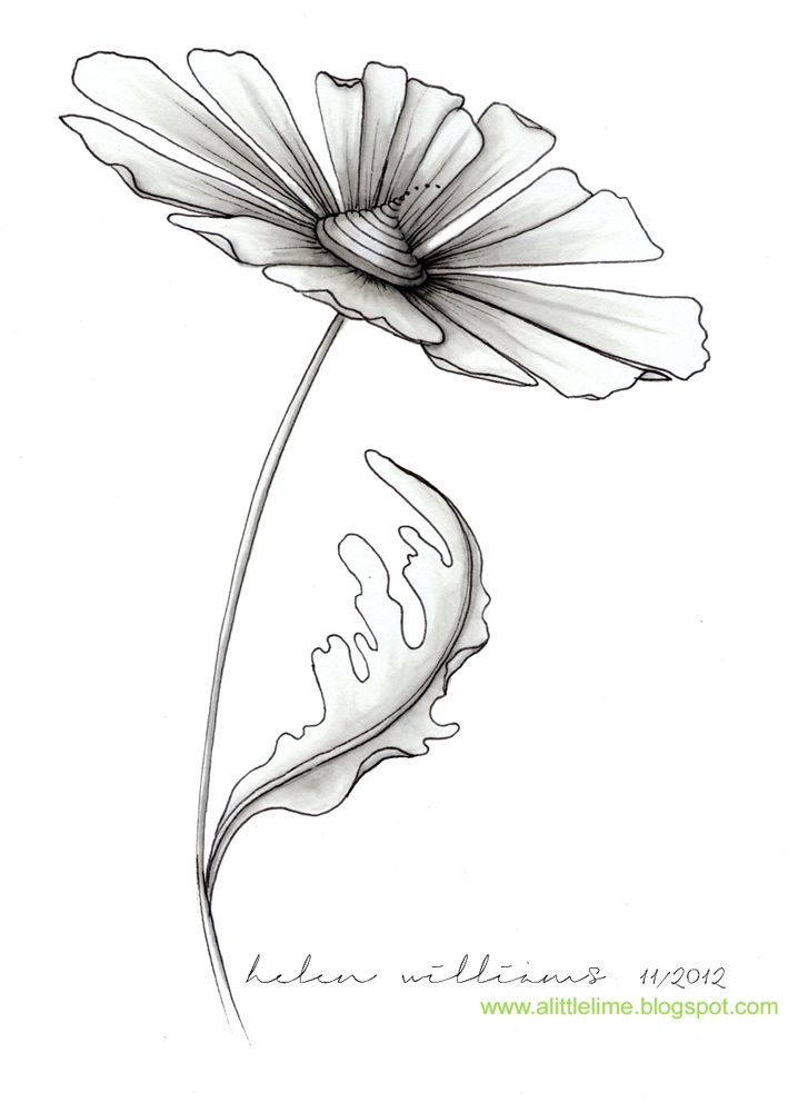 Pin de Moikje Ach en tekeningen | Pinterest | Dibujo, Bordado y La ...