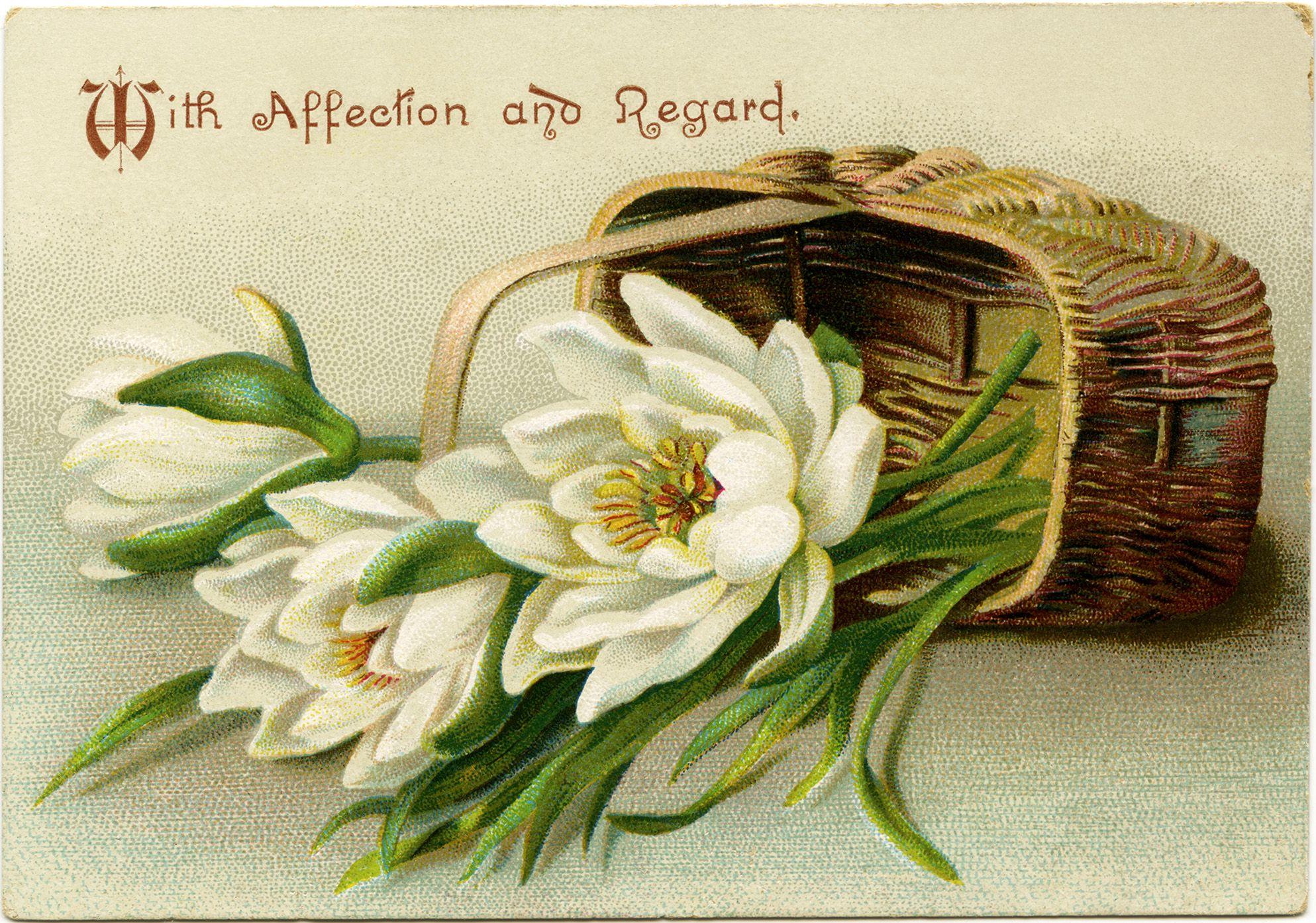 Victorian Flower Card Vintage Flower Clip Art White Flowers In