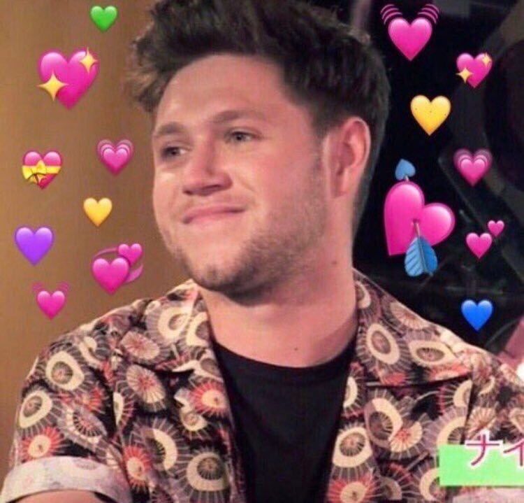 Pin By El On Niall Horan One Direction Memes Meme Faces I Love One Direction