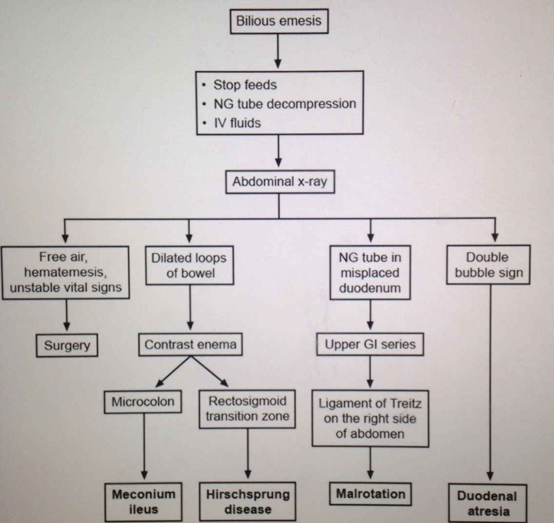 Evaluation of bilious emesis    First things to do are stop feeding
