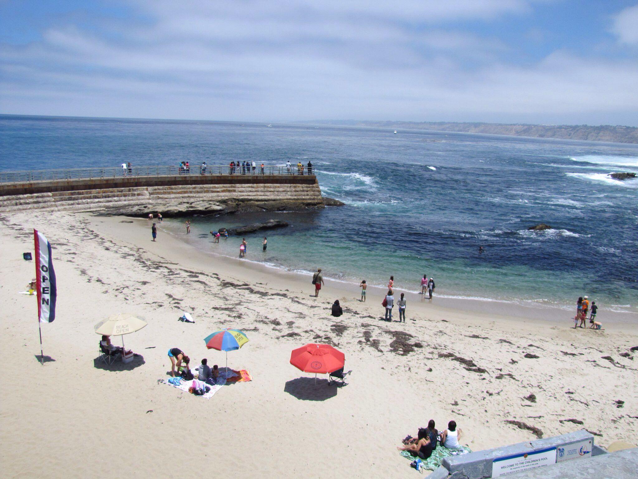 Seal Beach La Jolla, Ca | La Jolla, Ca | Pinterest | La jolla, Seals ...