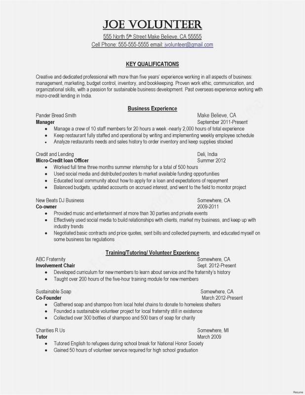 Summer School Progress Report Template Professional 14 Lebenslauf Marketing Blanchesnickelodeon Resume Examples Job Resume Examples Basic Resume Examples