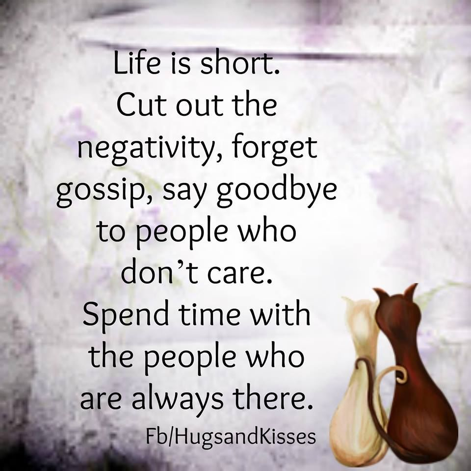 Short Quotes About Life Life Is Short Cut Out The Negativity  Frases Y Poemas