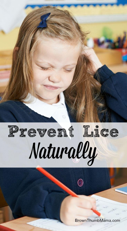 Natural lice prevention spray lice prevention spray lice