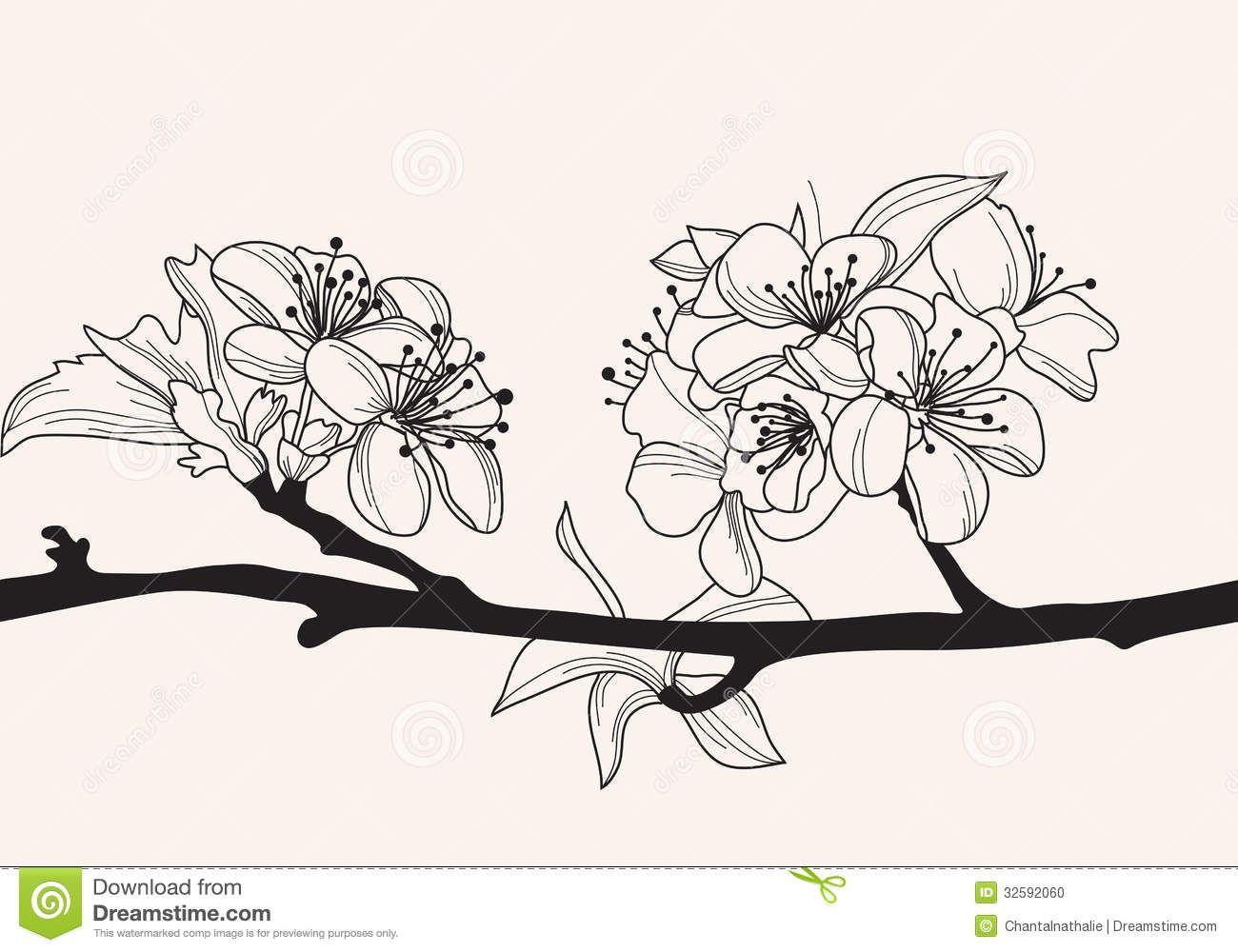 cherry blossom drawings black and white - Google zoeken ...