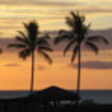 Heron Hollow: 5 Bedroom House Rental in Ocean Park with