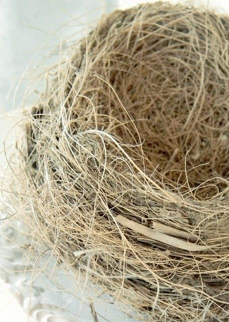Don't be caught out in retirement with an empty nest. Start saving today.