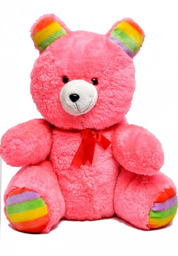 Twenty Inches Pink Rainbow Teddy Bear