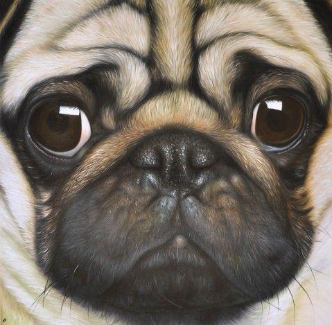 Pug Portrait I Want This But As A Black Pug Like Cooper Pugs