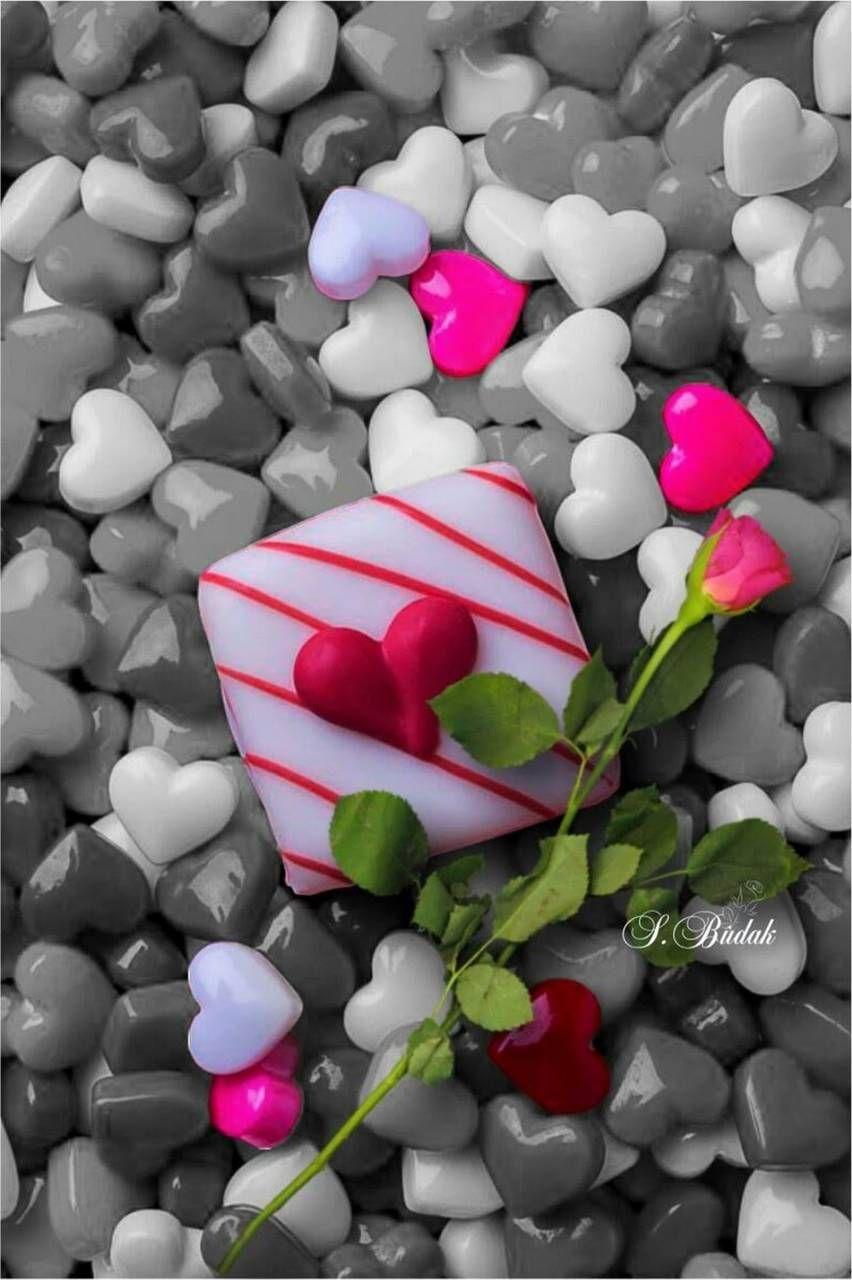 Love Nice Wallpaper Zedge