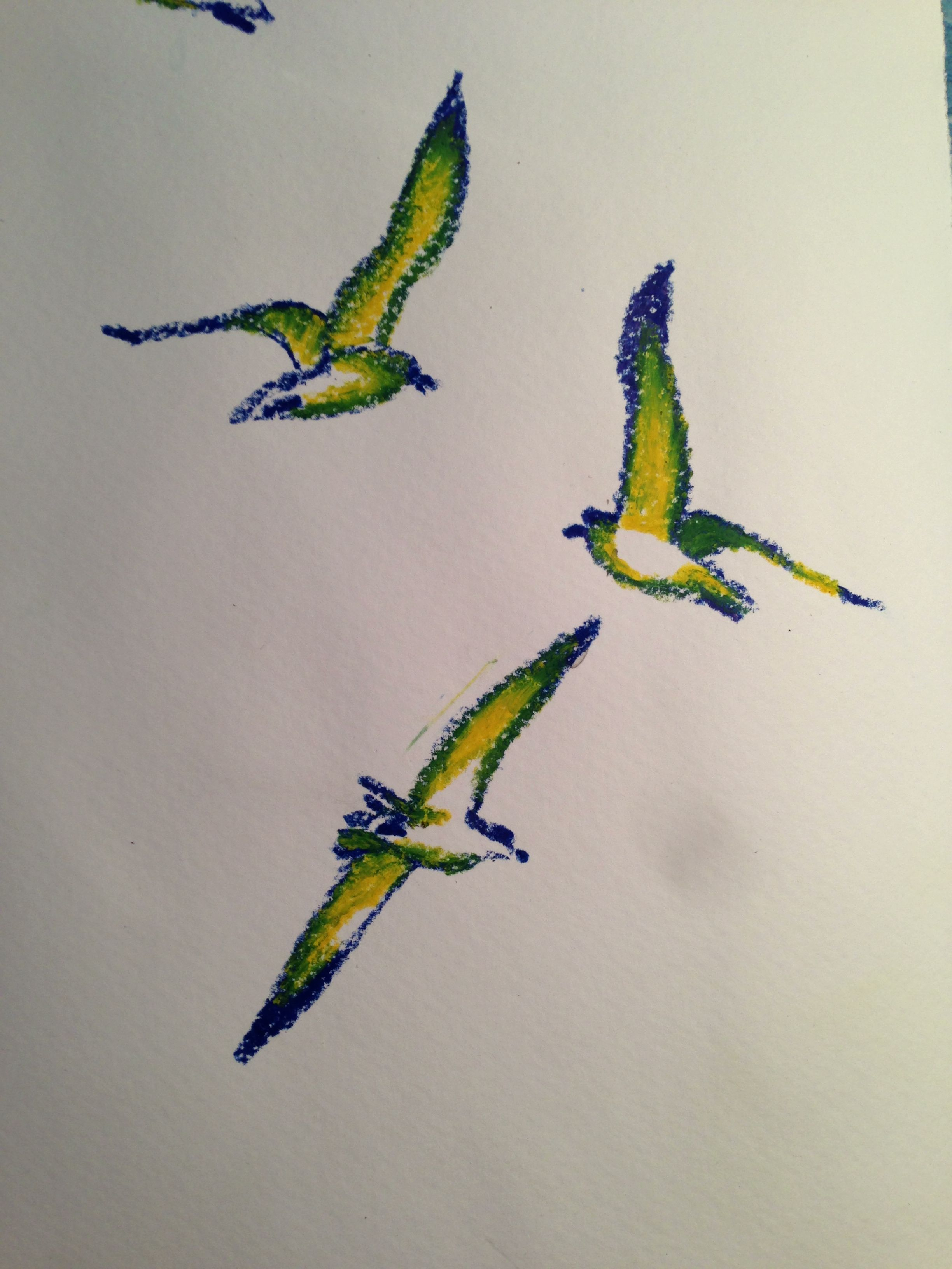Seagulls drawin with yellow and blue crayon pencils, mixed on the page to add green.