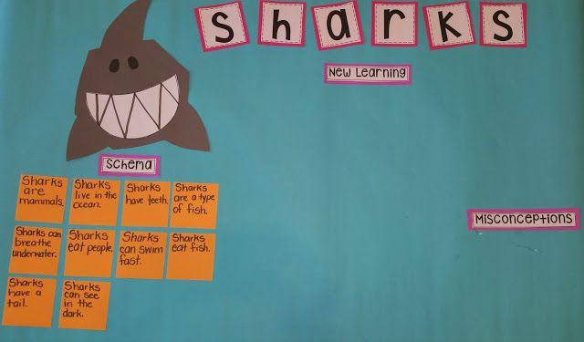 Shark Schema Chart: Teaching with Intention!