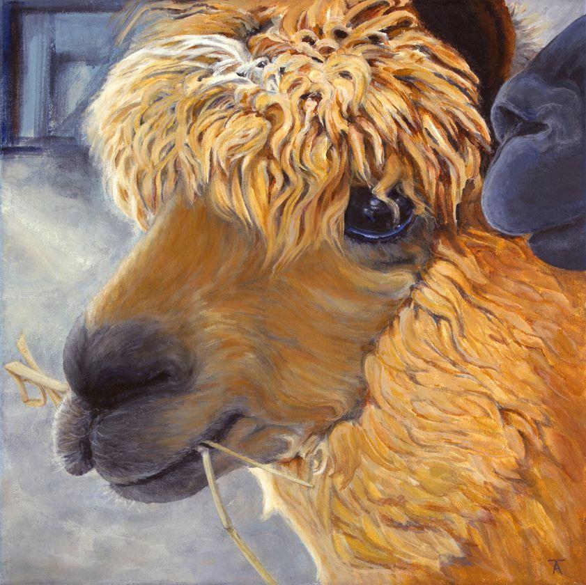 I Know A Secret Original Painting Of Alpaca