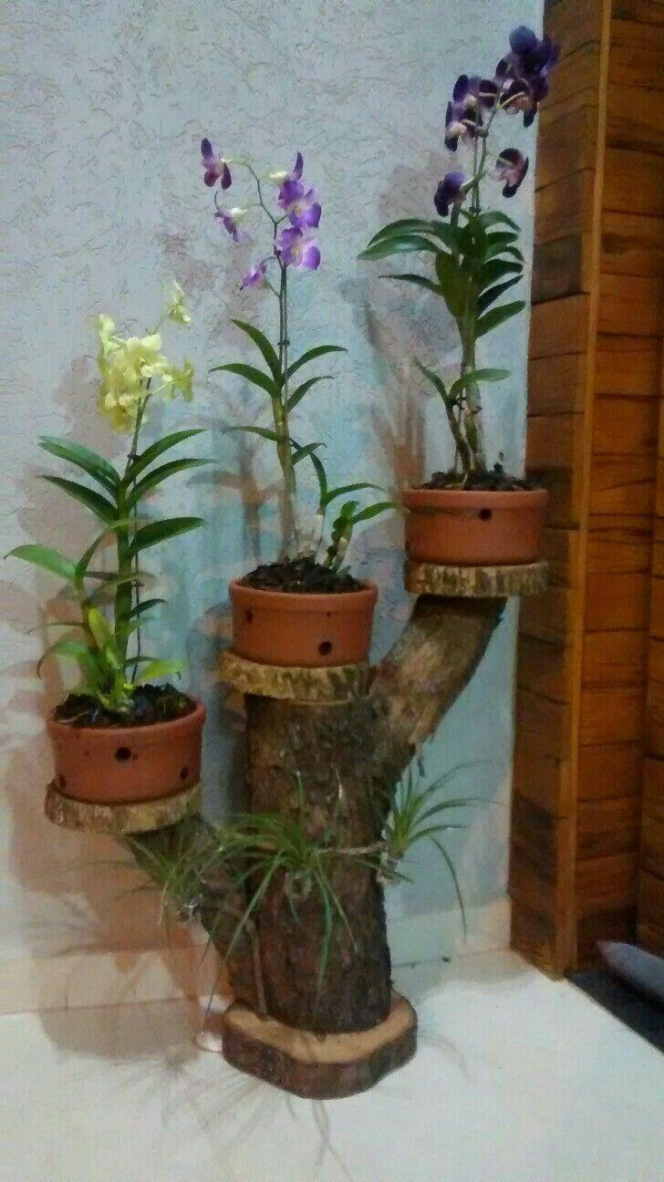 Pin De En Pinterest Jardiner A  ~ Macetas Originales Para El Jardin