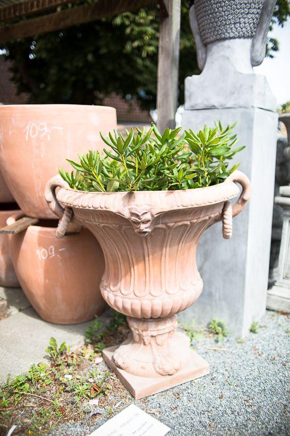Charmant Diese Wunderbare Topf Wirkt Sehr Anmutig In Jedem Garten. #teramico #garten  #garden