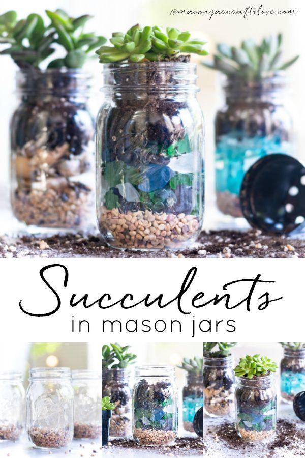Summer Succulent Mason Jar Planters - Mason Jar Crafts Love