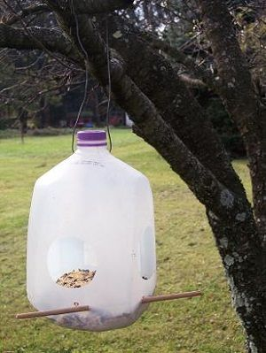 Rampant Reusing Plastic Milk Jugs is part of Upcycled Crafts Reuse Milk Jug - Need a new flowerpot, scoop, or birdfeeder  These items (and many more!) can be created out of plastic milk jugs  Check out the awesome options!