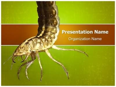 Water larva powerpoint template is one of the best powerpoint water larva powerpoint template is one of the best powerpoint templates by editabletemplates toneelgroepblik Images