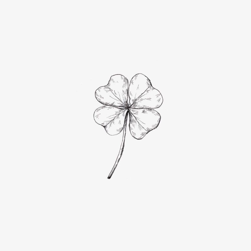 Four Leaf Clover Hand Drawn By Inkylines Art Needs Drawings