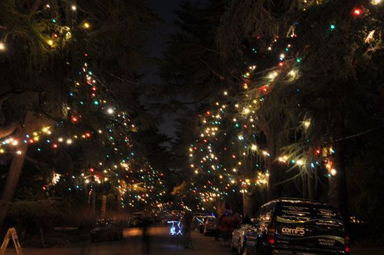 Christmas Tree Lane Vintage Los Angeles And Beyond Christmas