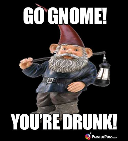 Pin On Gnomes Funny Gnome Humor