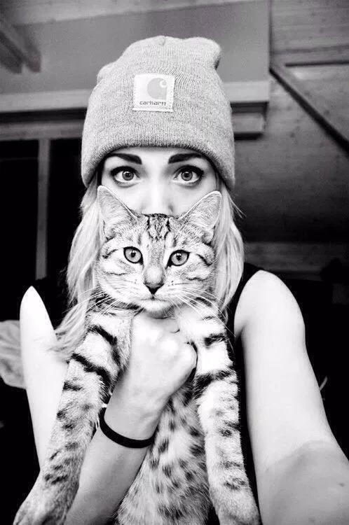 خلفيات قطط كيوت 2019 صور قطط للبنات رائعة 2020 فوتوجرافر Pet Photography Poses Pet Photography Cat Cat Photography