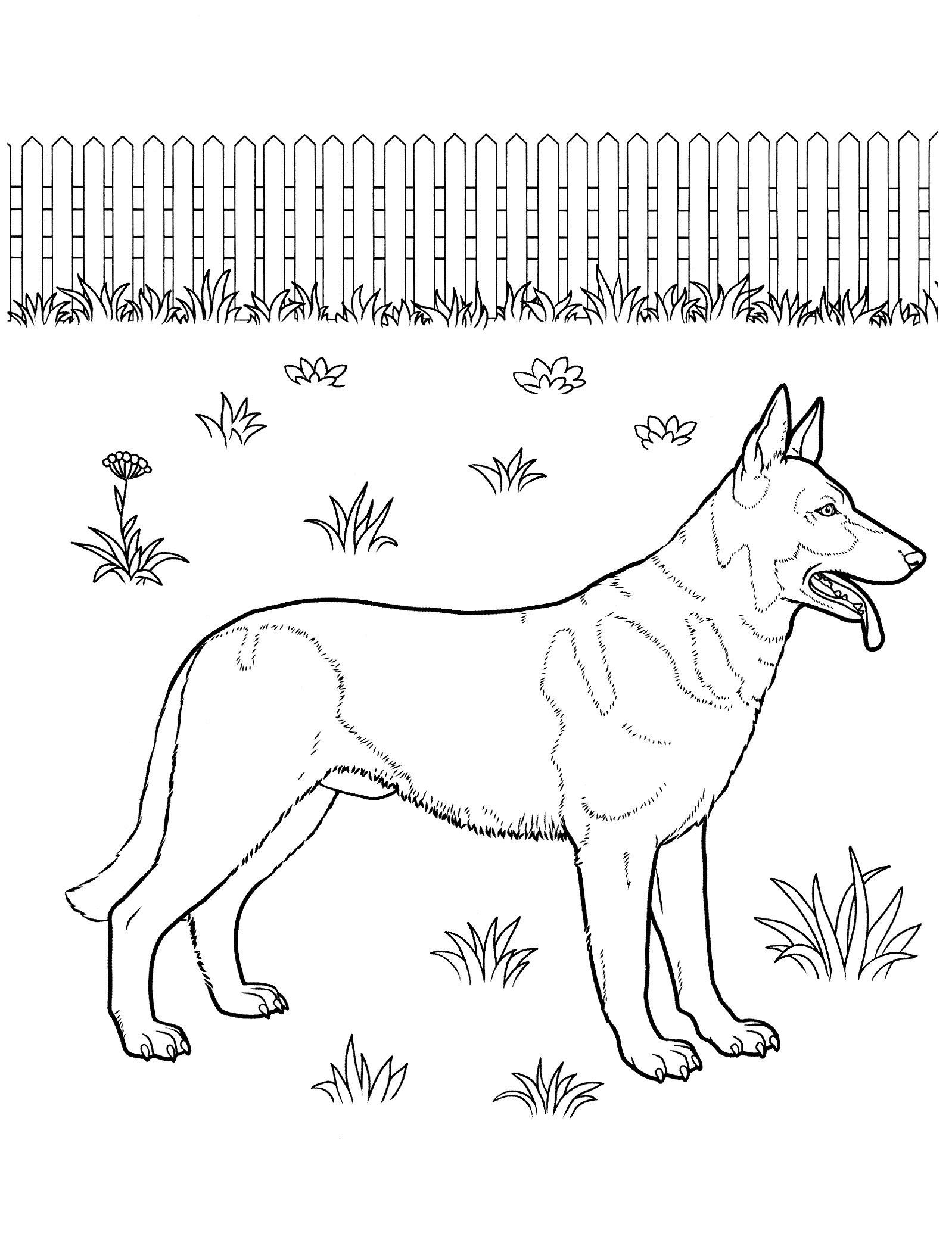dog_coloring_pages_20 Teenagers coloring pages | Printables ...