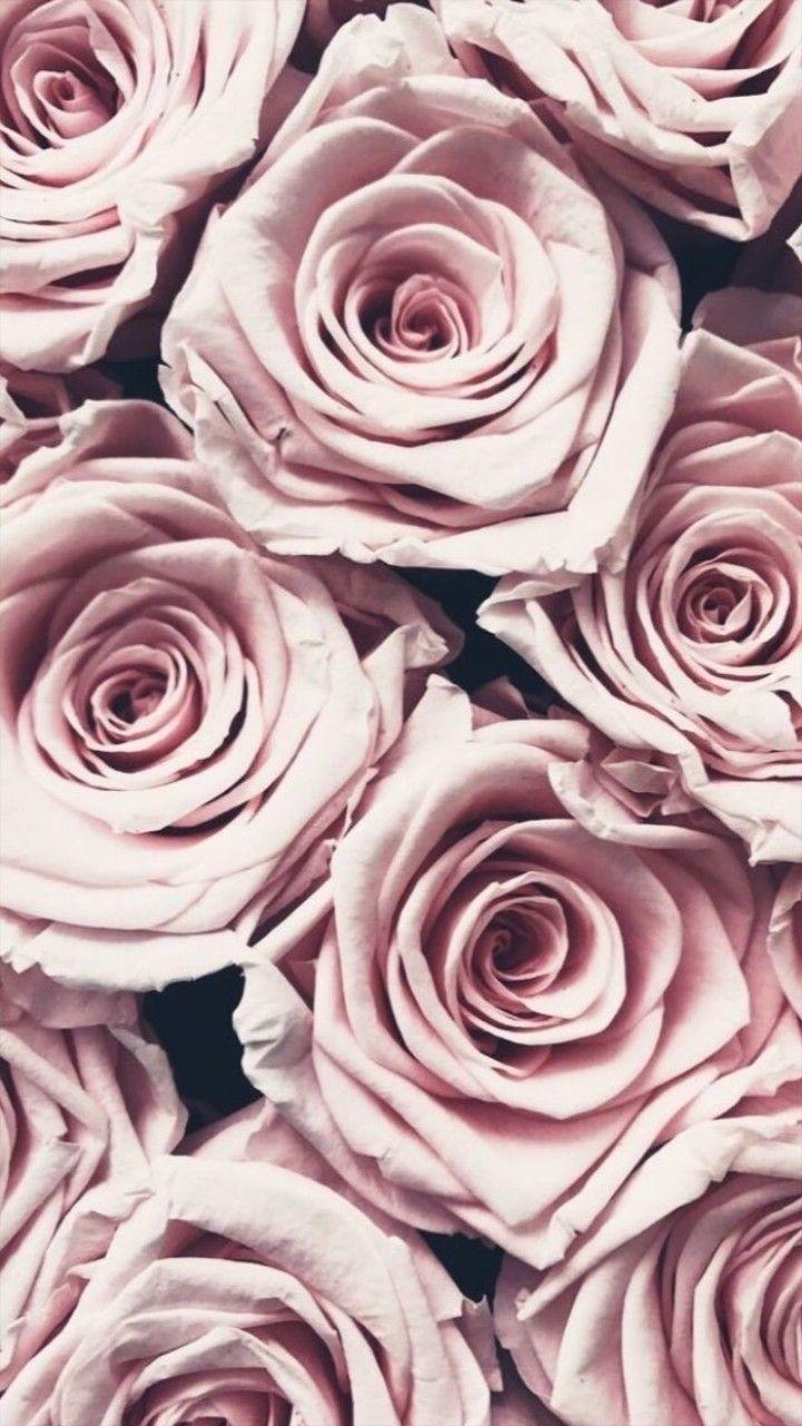 Pink Corner Flowers   Flower Background Wallpaper, Iphone