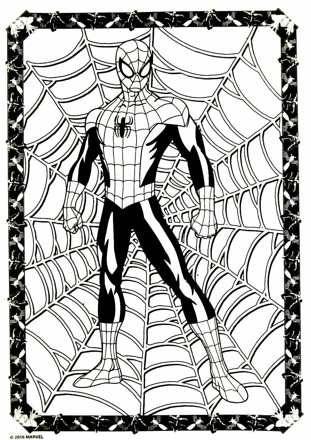 Spiderman Coloring Book Page Spiderman Coloring Superhero Sketches Coloring Book Art