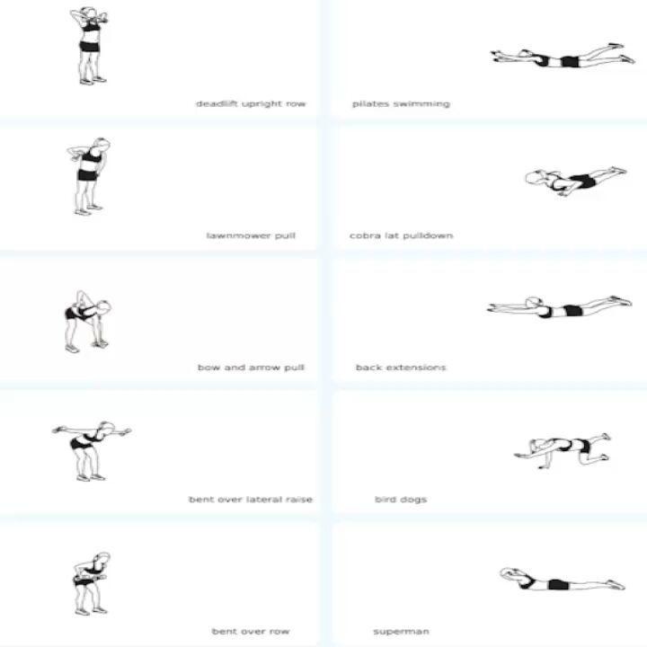 Back Exercise Training for back-fit.... #backworkout #fitness #bodybuilding #fitnessmo...