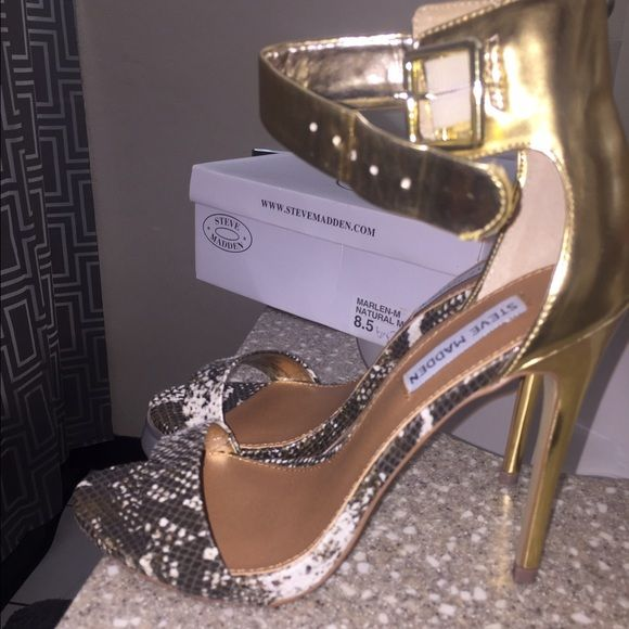 Steve Madden Marlene heels Snakeskin and gold detail Steve Madden Shoes Heels