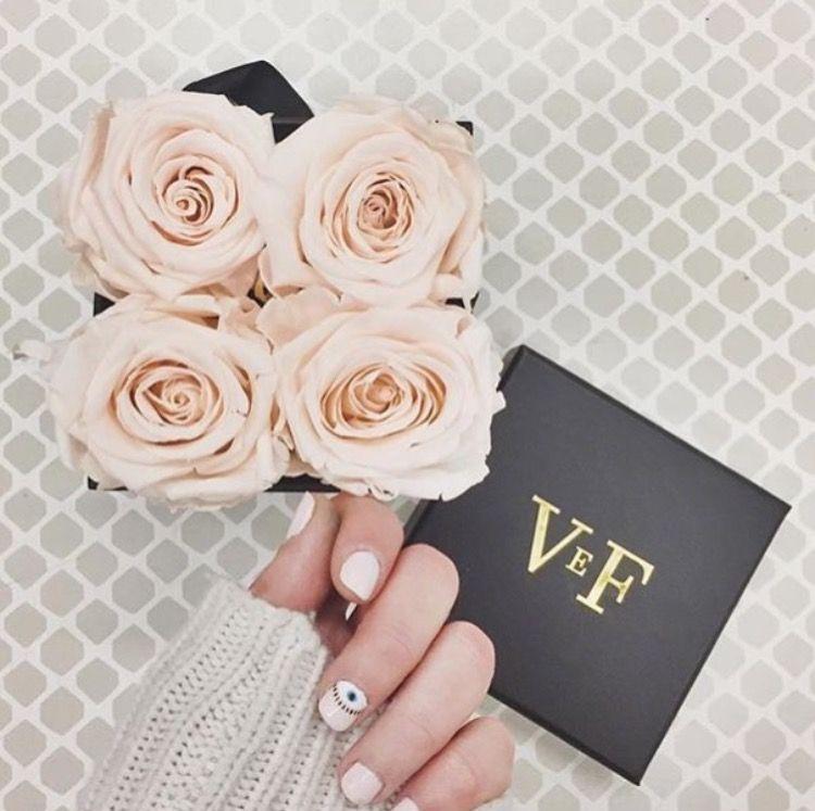 Venus Et Fleur Blush Roses Accessories Pinterest Flowers Rose