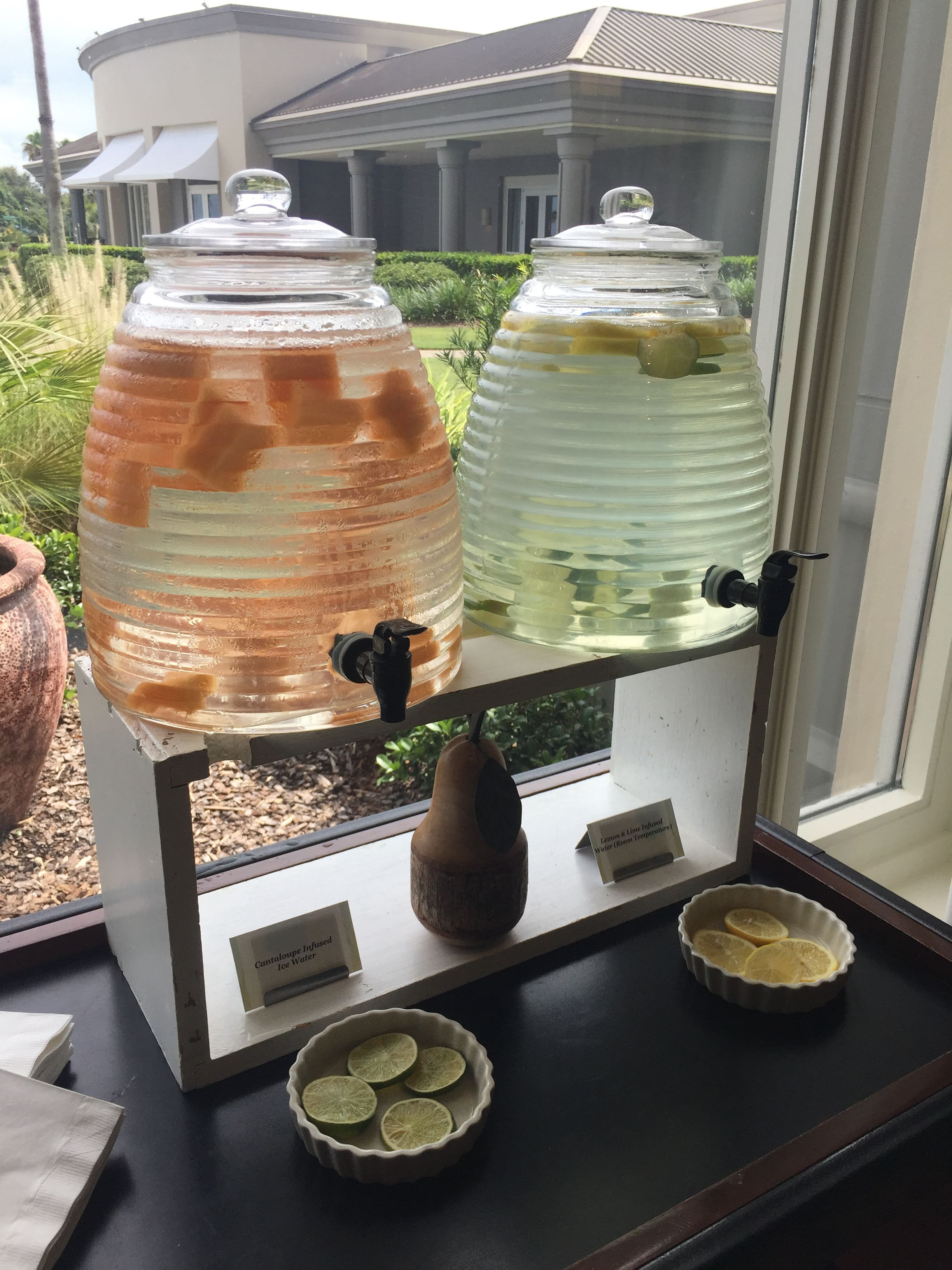 Infused Water Station Wedding Kitchen Appliances Home Decor