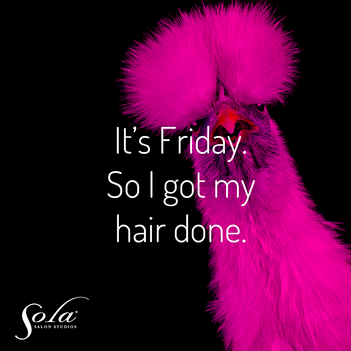 It S Friday So I Got My Hair Done Friday Funny Salon Humor Salon Humor Friday Quotes Funny Friday Humor