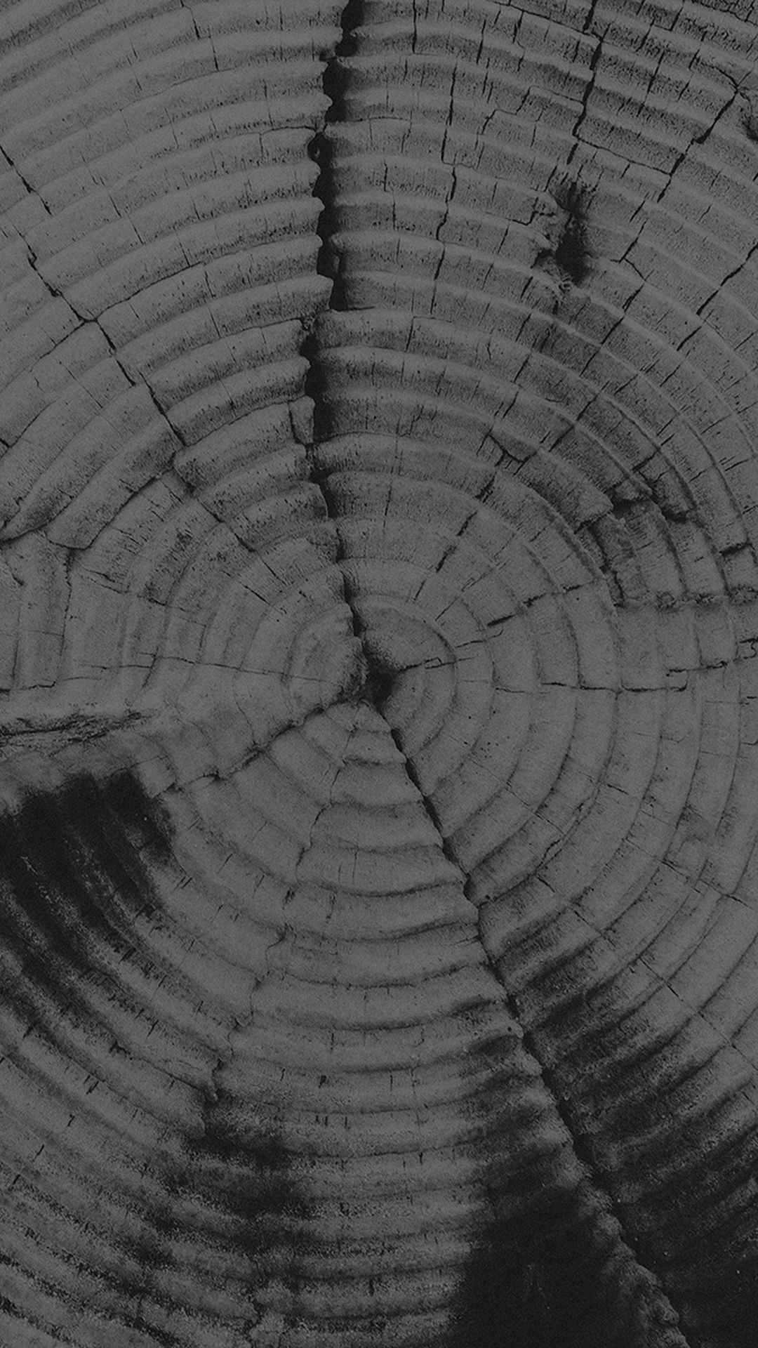 Old Tree Texture Pattern Dark iPhone 8 Wallpapers (With