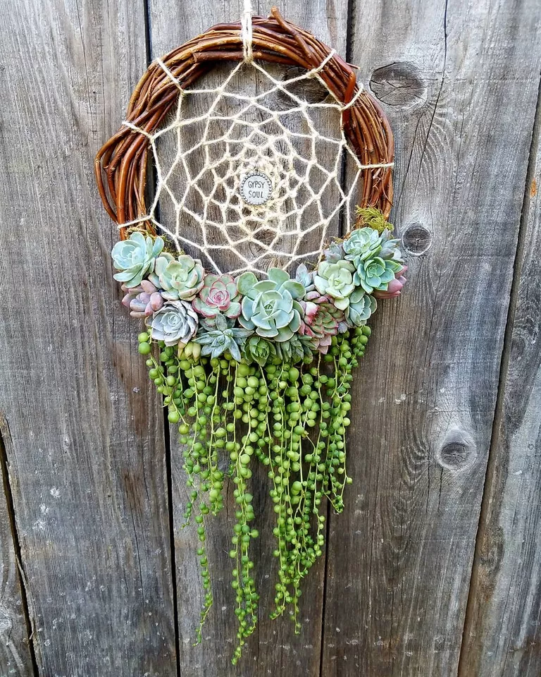 Turn Your Garden Into An Outdoor Aquarium With Succulent Jelly Fish Hanging Planters is part of Dream catcher, Succulents diy, Succulents, Hanging succulents, Hanging planters, Colorful garden - These are gorgeous!