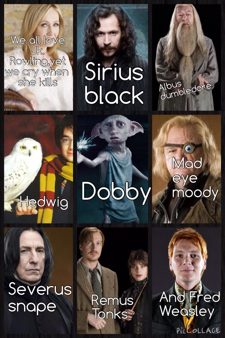 We love jk Rowling but why did she have to kill these ?