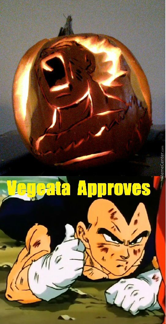Vegeta approves