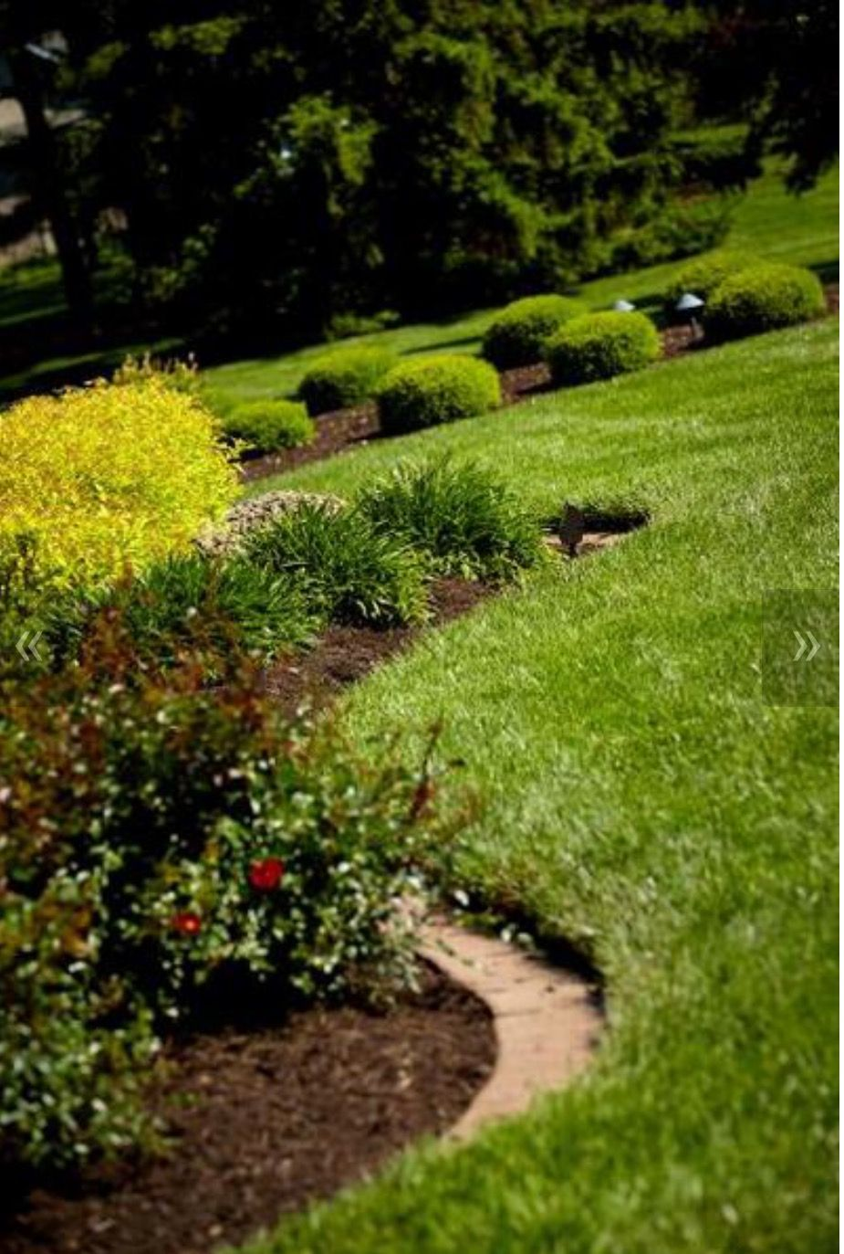 Pin by lawn perfection inc on plantings and mulch pinterest