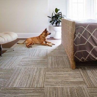 carpet tiles bedroom. Fully Barked. Carpet TilesCarpet Tiles Bedroom T