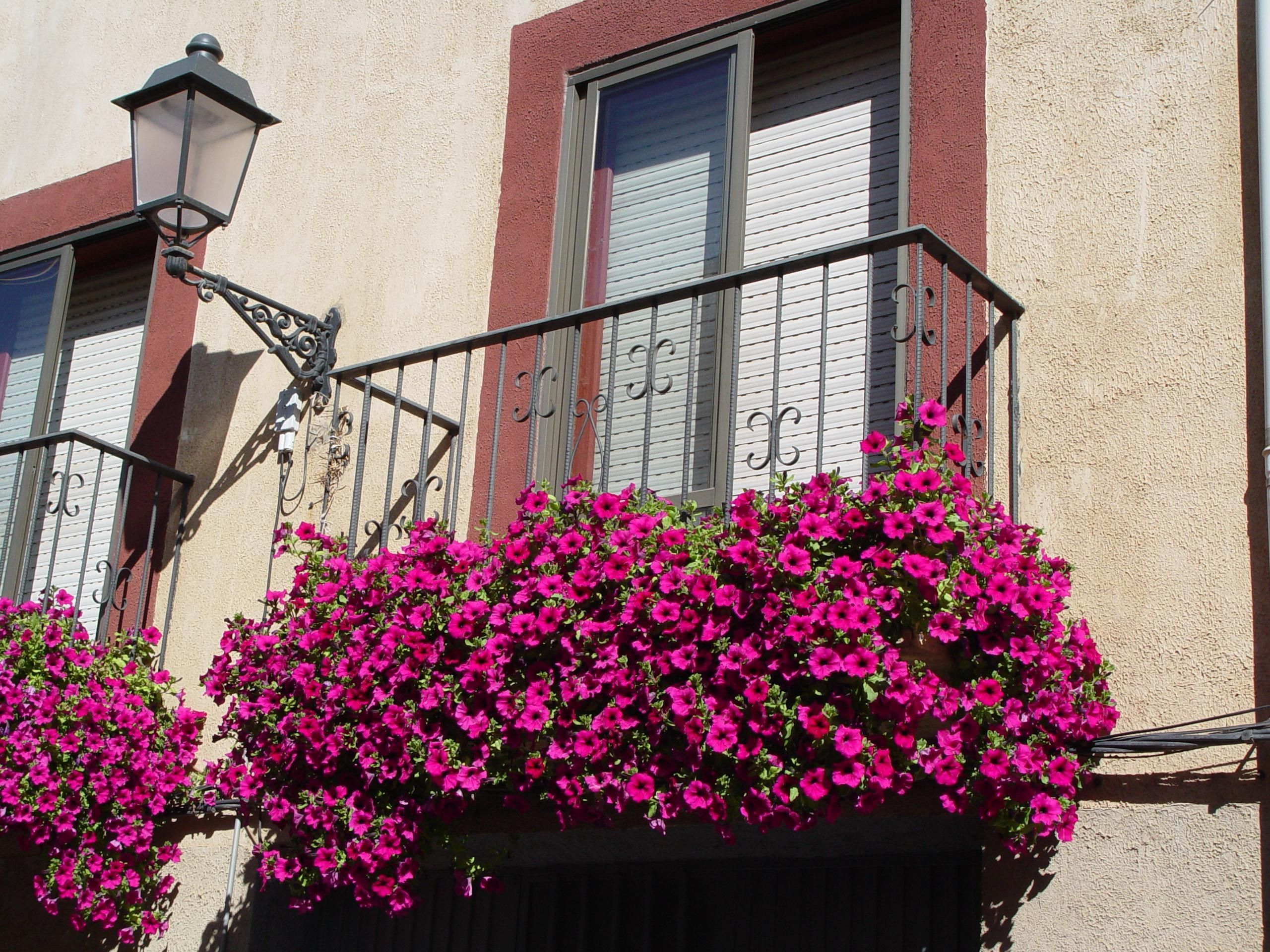 Balcon y flores jardin era en 2019 flores balcon - Plantas jardineras exterior ...