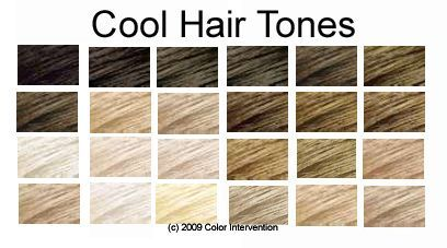 Hair Color For Cool Skin And Blue Eyes This Means That You Have Cool Toned Hair Tone Hair Cool Tone Hair Colors Hair Color Chart