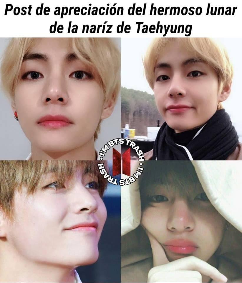 Yo También Tengo Un Lunar En La Nariz Y Taehyung Es Mi Bias Eso Significa Solo Una Cosa Ahhhhhhhh Bts Memes Caras Bts Memes Chicos Bts