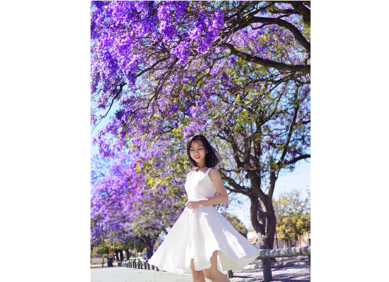 Jacaranda Blooms In Perth Thepepperplane Perth Jacaranda Cherry Blossom Japan Bloom Jacaranda Tree