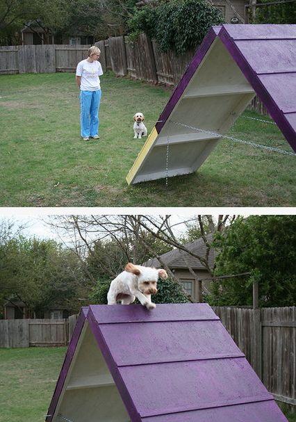 Toys 4 Dogs S Blog Diy Dog Stuff Dog Playground Dog Agility Diy