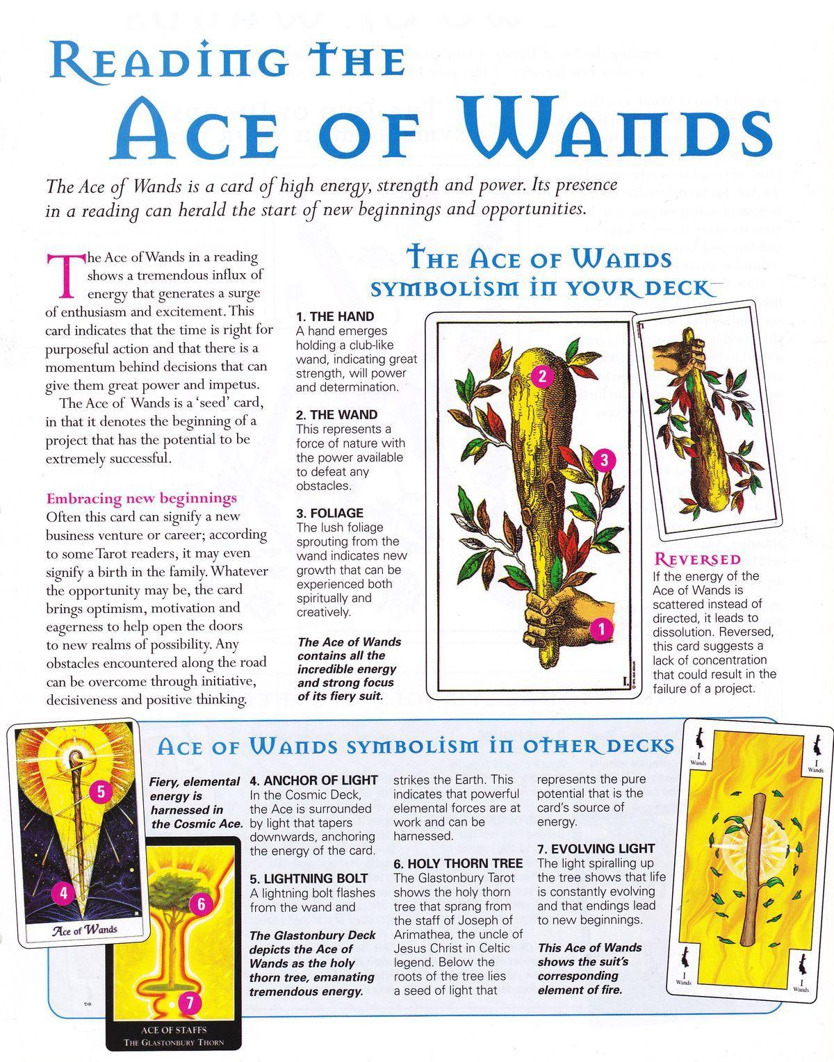 Ace of wands tarot tarot card spreads reading tarot cards